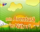 Aventura in Natura - Competitie OFF ROAD - PC HOUSE TROPHY